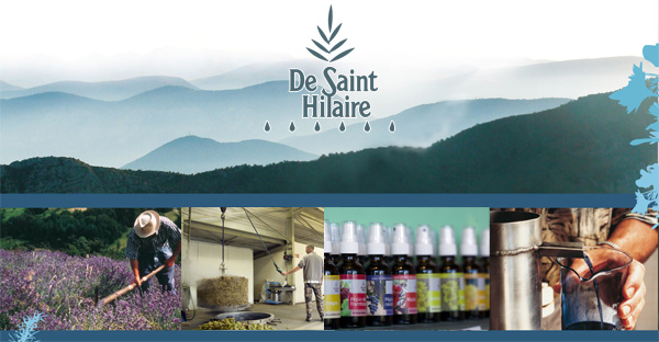 Distillerie De Saint Hilaire